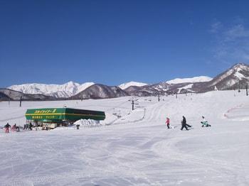 TsugaikeSki0203 (1).jpg