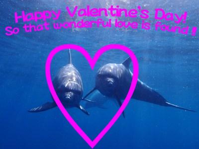 Valentine2015.jpg